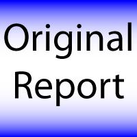 Original_Report